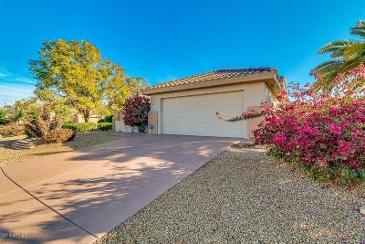 Surprise Single Family Home For Sale: 17709 N Somerset Drive
