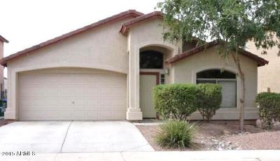 Maricopa Single Family Home For Sale: 42299 W Michaels Drive