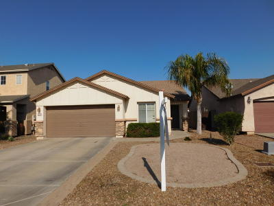 San Tan Valley Single Family Home For Sale: 4742 E Meadow Land Drive
