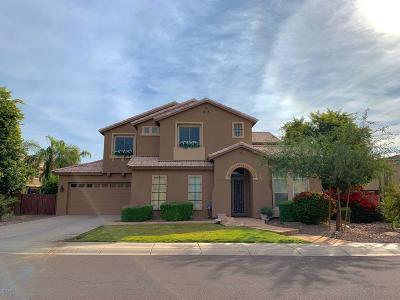 Gilbert Single Family Home For Sale: 4283 S Ramona Street
