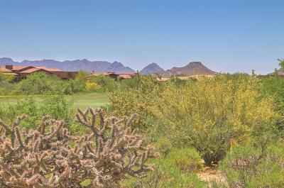 Scottsdale Residential Lots & Land For Sale: 11022 E Winter Sun Drive