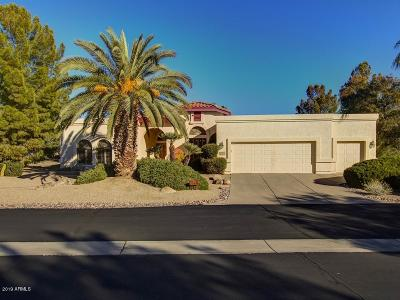 Rio Verde Single Family Home For Sale: 18908 E Reata Lane