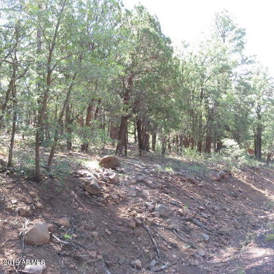 Lakeside Residential Lots & Land For Sale: N Springer Mountain Drive