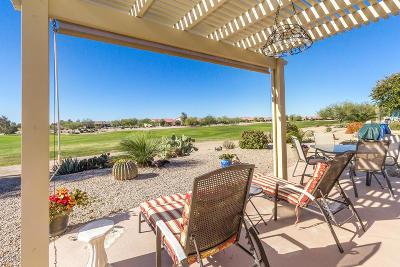 Casa Grande Single Family Home For Sale: 81 S Agua Fria Lane