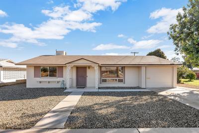 Sun City Single Family Home For Sale: 10633 N 111th Avenue