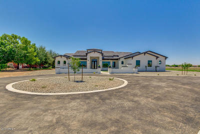 Gilbert Single Family Home For Sale: 17315 E Stone Crest Drive