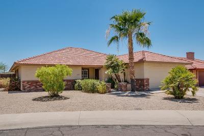 Phoenix Single Family Home For Sale: 1131 E Redfield Road