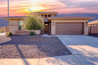 Queen Creek Single Family Home For Sale: 4361 W South Butte Road