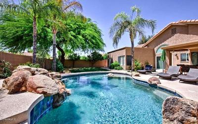 Tempe Single Family Home For Sale: 155 W La Vieve Lane