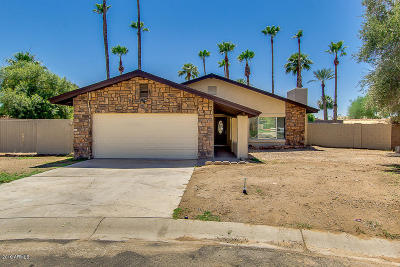 Litchfield Park Single Family Home For Sale: 335 W Pintura Circle