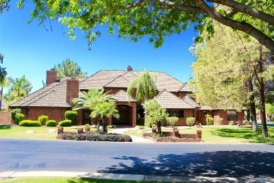 Gilbert Single Family Home For Sale: 460 S Riata Street