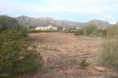 Waddell Residential Lots & Land For Sale: 8512 N 192nd Avenue