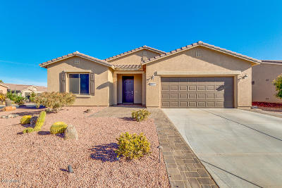 Maricopa Single Family Home For Sale: 20177 N Geyser Drive