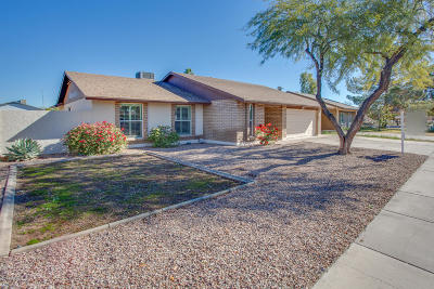 Chandler Single Family Home For Sale: 205 S Cottonwood Street