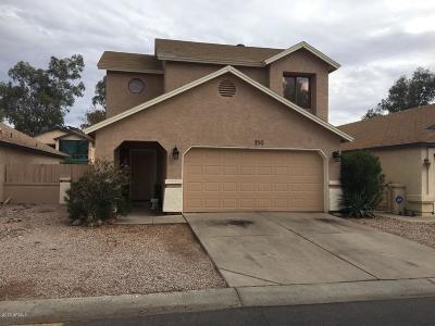 Mesa Single Family Home For Sale: 921 S Val Vista Drive #156