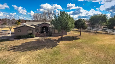 Gilbert Single Family Home For Sale: 16915 S 173rd Way