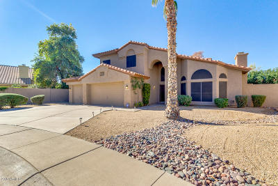 Tempe Single Family Home For Sale: 9680 S Dromedary Drive