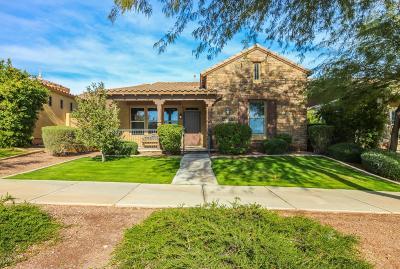 Buckeye Single Family Home For Sale: 20988 W Sunrise Lane