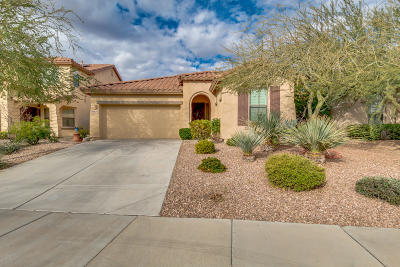 Peoria AZ Single Family Home For Sale: $295,000