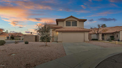 Chandler Single Family Home For Sale: 1233 W Cindy Street