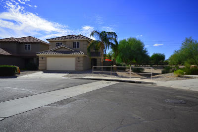 San Tan Valley Single Family Home For Sale: 31764 N Cheyenne Drive