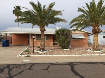 Apache Junction Single Family Home For Sale: 1486 S Main Drive