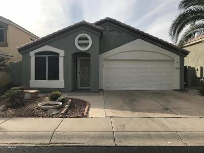 Peoria Single Family Home For Sale: 14570 N 90th Drive