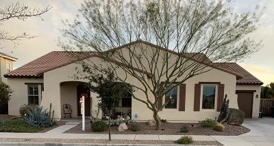 Queen Creek Single Family Home For Sale: 21151 E Via De Arboles