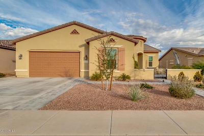 Maricopa Single Family Home For Sale: 42850 W Mallard Road
