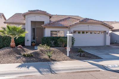 Chandler Single Family Home For Sale: 2131 W Shannon Street