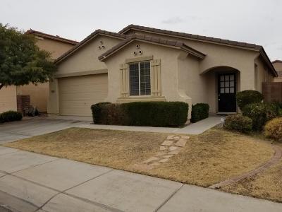 San Tan Valley Single Family Home For Sale: 3584 E Amarillo Way
