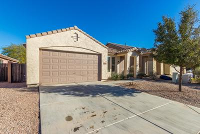 Maricopa Single Family Home For Sale: 18993 N Miller Way