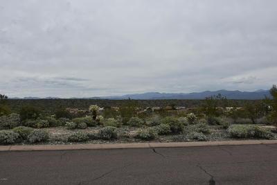 Fountain Hills Residential Lots & Land For Sale: 14844 E Cerro Alto Drive