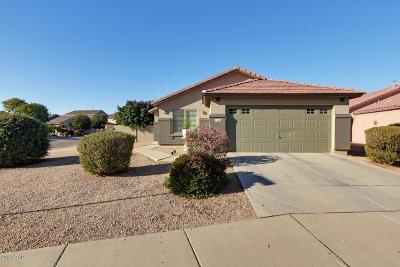 Surprise Single Family Home For Sale: 13986 W Mauna Loa Lane
