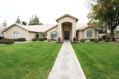 Mesa,  San Tan Valley,  Queen Creek, Gold Canyon Single Family Home For Sale: 4620 E Gable Circle