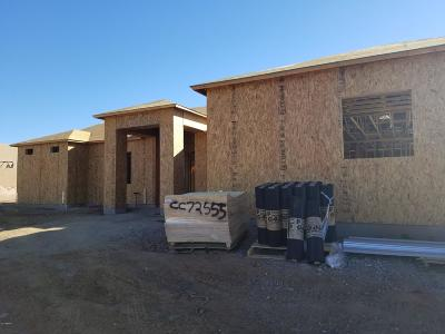 Phoenix Single Family Home For Sale: 40018 N 7th Street