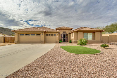 San Tan Valley Single Family Home For Sale: 32274 N Sunflower Trail