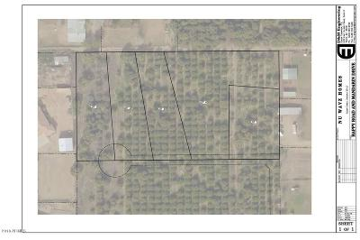 Queen Creek AZ Residential Lots & Land For Sale: $220,000