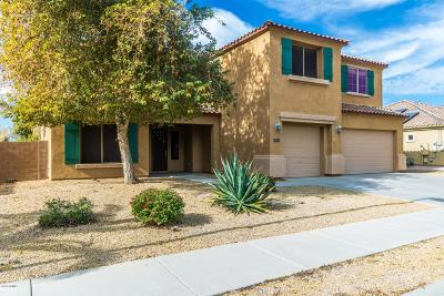 Goodyear Single Family Home For Sale: 84 S 169th Drive