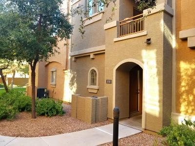 Gilbert Rental For Rent: 240 W Juniper Avenue #1010