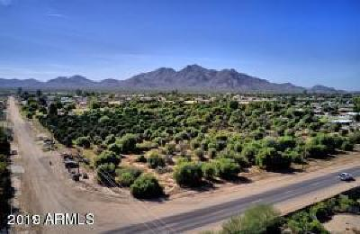 Queen Creek AZ Residential Lots & Land For Sale: $245,000