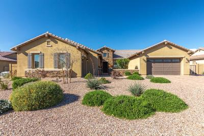 San Tan Valley Single Family Home For Sale: 1146 E Via Nicola