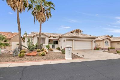 Sun Lakes Single Family Home For Sale: 26230 S Thistle Lane