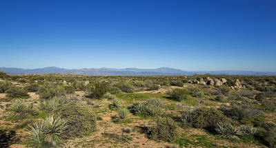 Scottsdale Residential Lots & Land For Sale: 26413 N 119th Street