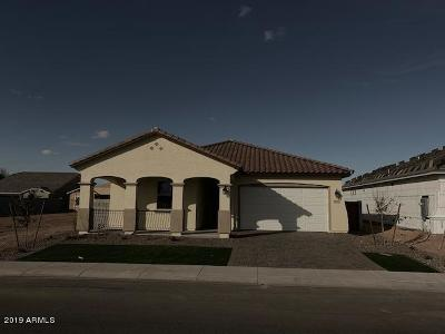 Maricopa Single Family Home For Sale: 41372 W Centennial Drive