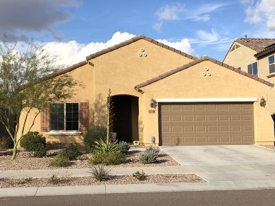 Phoenix Single Family Home For Sale: 2618 W Gray Wolf Trail W