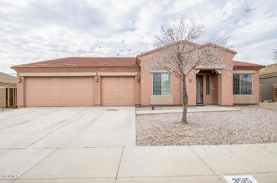 Casa Grande Single Family Home For Sale: 3515 N Excalibur Place