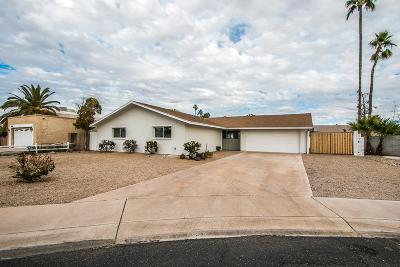 Tempe Single Family Home For Sale: 3915 S Juniper Street