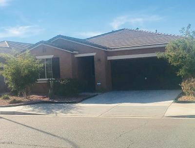 Tolleson Rental For Rent: 4706 S 102nd Lane