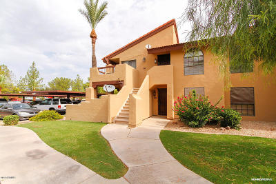 Chandler Rental For Rent: 1351 N Pleasant Drive #1175